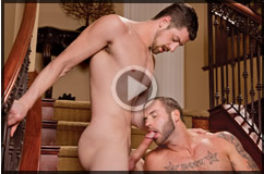 Scene Download
